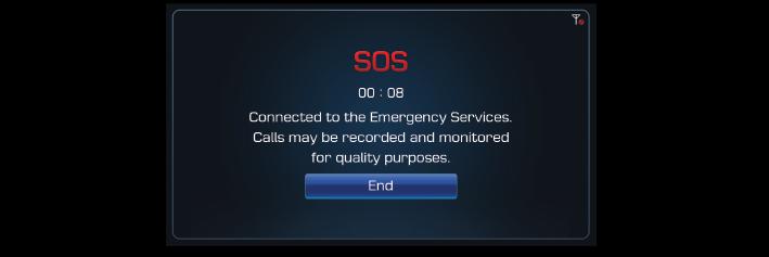 Utilisation des services Blue Link